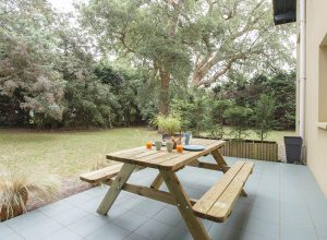 chambre-location-appartement-calme-neuf-plage-capbreton-arbre